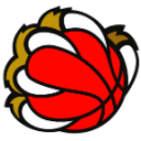 Logo-New-Basket-pallone-143x143