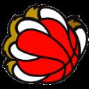 Logo-New-Basket-pallone-143x143