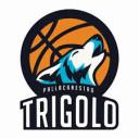 Trigolo